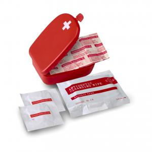 An image of First aid kit in plastic case