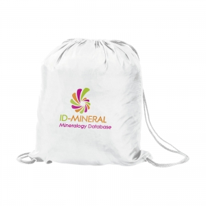 An image of PromoBag backpack