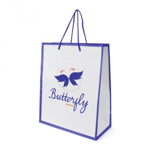 An image of Newquay Medium Glossy Paper Bag